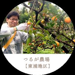 つるが農場 敦賀 東浦地区