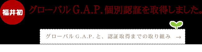 グローバルG.A.P.個別認証取得 グローバルG.A.P.と認証までの取り組みについて