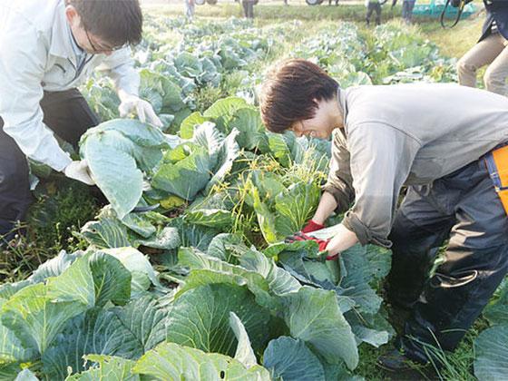 つるが農場(沓見地区)写真