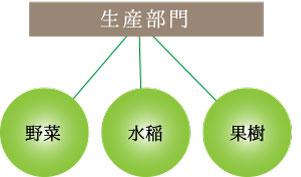 生産部門 野菜、水稲、果樹
